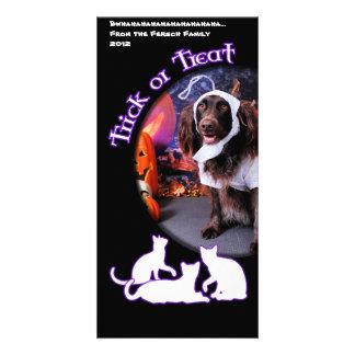 O Dia das Bruxas - Deutscher Wachtelhund - Matilda Cartão Com Foto