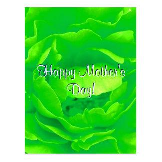 O dia das mães feliz verde-claro aumentou