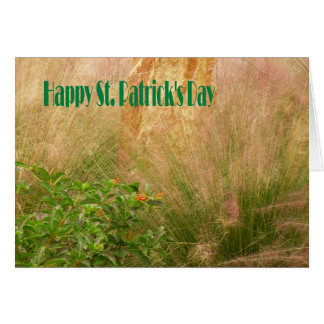 O dia de St Patrick do cartão com plantas