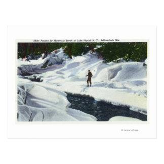 O esquiador através dos campos pausa pelo ribeiro cartão postal