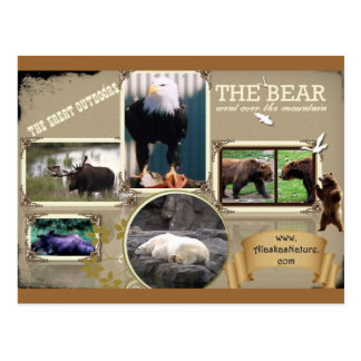 O excelente fora em Alaska Cartão Postal