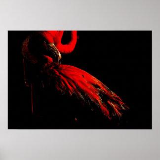 O flamingo flamejante pôster