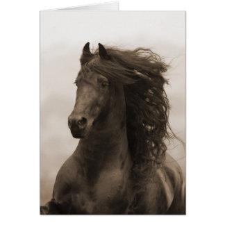 O frisão funciona o cartão do cavalo