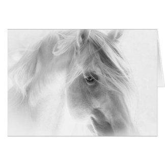 O garanhão branco incandesce - cartão do cavalo