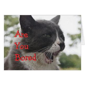 O gatinho das meias Bocejar-personaliza Cartão Comemorativo