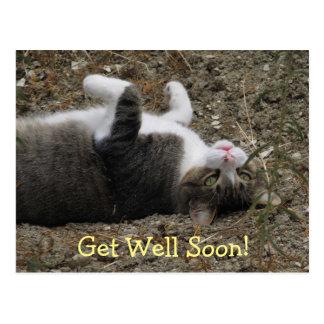 O gatinho de cabeça para baixo obtem o cartão bom