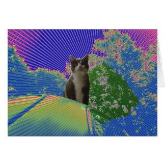 O gatinho explora a terra feericamente cartoes