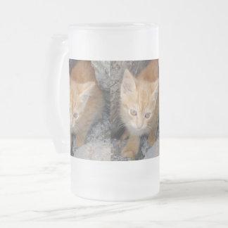 O gatinho inocente geou a caneca do vidro de fosco