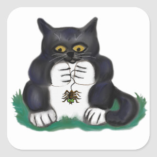 O gatinho preto do smoking encontra uma aranha de adesivo quadrado