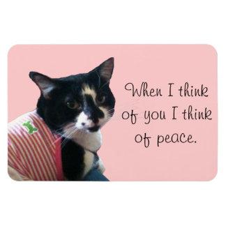 O gato bonito do smoking pensa de ímãs da paz
