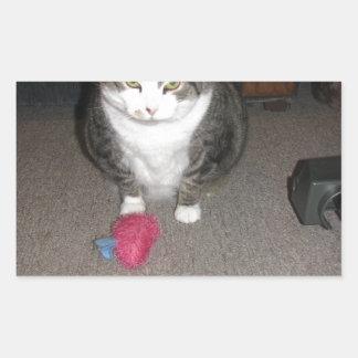 O gato gordo mal-humorado não é divertido adesivo retangular