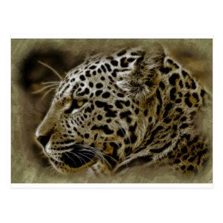 O gato selvagem de Jaguar mancha o destino Cartão Postal