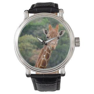 """O girafa diz o """"queijo"""" com um relógio grande do"""