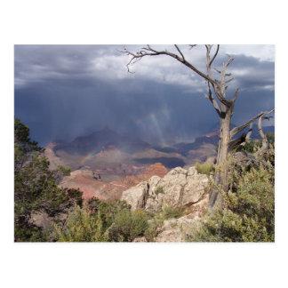 """O """"Grand Canyon vê"""" o cartão"""