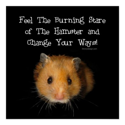 O hamster posters