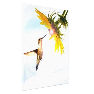 O healinglove do paraíso do colibri maravilhoso impressão em canvas
