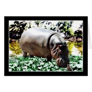 O hipopótamo e o pássaro cartão comemorativo