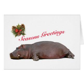 O hipopótamo tempera o cartão