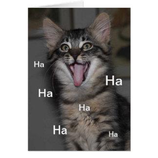 O hospital Cáspio do gatinho obtem logo o cartão