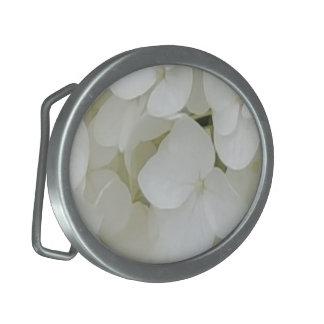O Hydrangea floresce a flor elegante branca floral