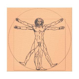 O impressão das canvas do homem de Vitruvian