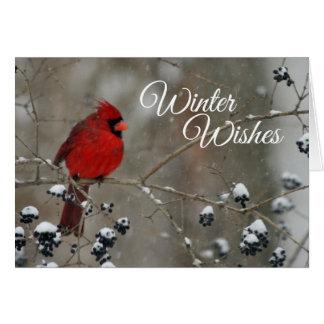 O inverno cardinal deseja o cartão