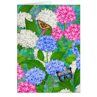 O jardim colorido do Hydrangea floresce o cartão