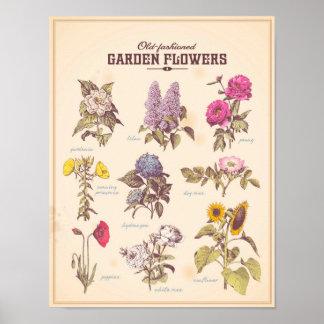 O jardim retro floresce o poster