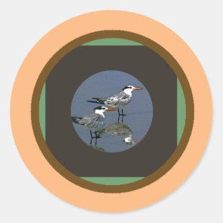 O jGibney Birds2CocoaBeach1 da série do artista do Adesivo