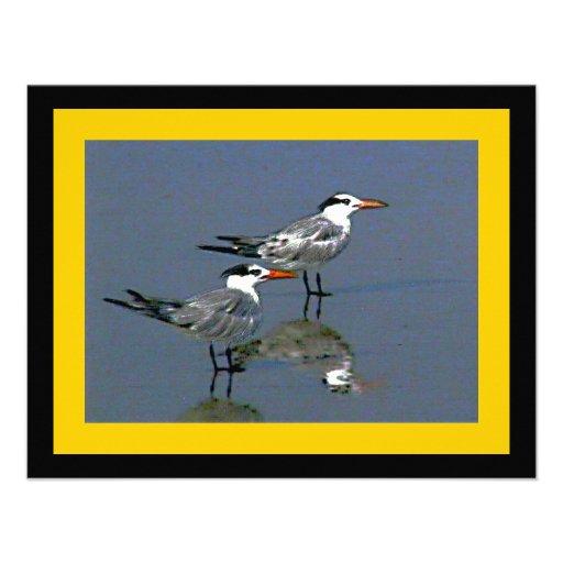O jGibney Birds2CocoaBeach1 da série do artista do Convites Personalizado