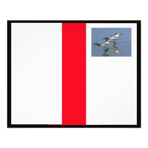 O jGibney Birds2CocoaBeach1 da série do artista do Panfletos Personalizado