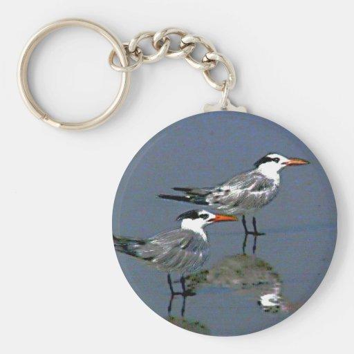 O jGibney Birds2CocoaBeach1 da série do artista do Chaveiros