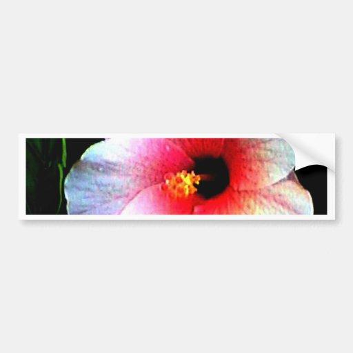 O jGibney Hibiscus72 da série de Artitst do MUSEU Adesivo