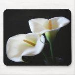 O lírio de Calla elegante floresce 13 Mousepads