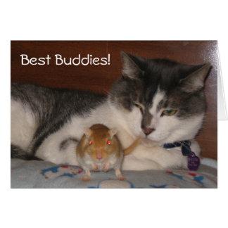 O melhor cartão da amizade dos amigos