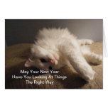 O melhor cartão do gato do ano novo