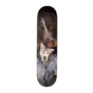 O melhor skate dos botões