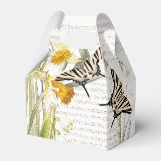 O narciso botânico floresce a caixa do favor da