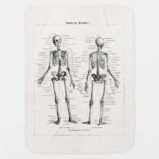 O osso humano de esqueleto da anatomia do vintage cobertorzinhos para bebe