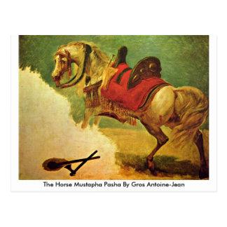 O Pasha de Mustapha do cavalo por Gros Cartão Postal