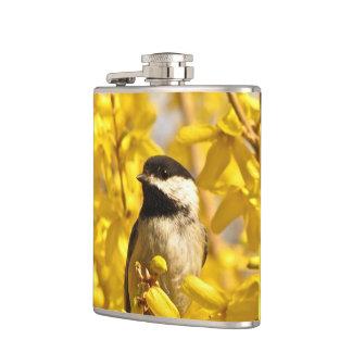 O pássaro do Chickadee no Forsythia amarelo