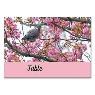 O pássaro empoleirou-se em um cartão de