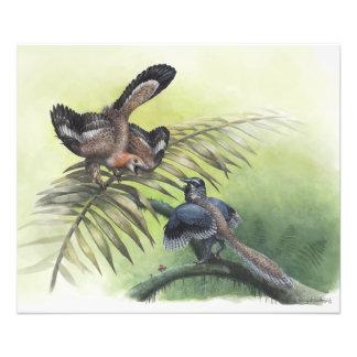 O pássaro o mais adiantado impressão de foto