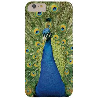 O pavão empluma-se a caixa bonita do iphone 6 capa barely there para iPhone 6 plus