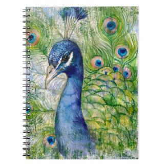O pavão empluma-se o livro de nota caderno espiral