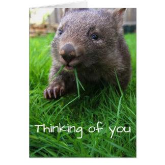 O pensamento de você carda! Wombat bonito, cartão