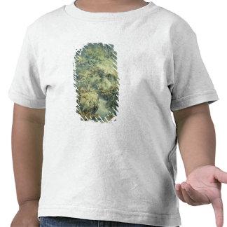 O pescador, 1794 (w/c sobre a grafite no papel) camiseta