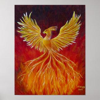 O Phoenix Pôster