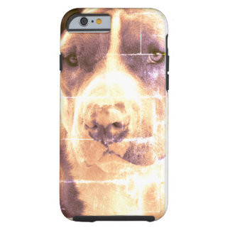 O pitbull salvado persegue capas de iphone