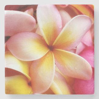 O Plumeria floresce o Frangipani havaiano floral Porta Copos De Pedras